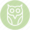 dreadful, fearful, halloween owl, horrible, scary icon