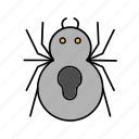 animal, bug, decoration, halloween, nature, scary icon