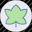 bloom, easter, flower, halloween, leaf, religion