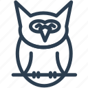 animal, cute owl, fowl, halloween, night, owl, owl bird icon
