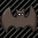 animal bat, couve souris, flying bat, flying fox, halloween bat, monster bat
