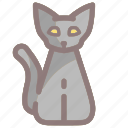 animal, black cat, cat, halloween, pet, scary