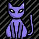 animal, cat, halloween, horror, pet, scary, spooky
