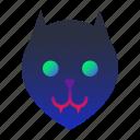 black cat, cat, halloween, scary