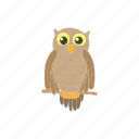animal, bird, cartoon, halloween, night, owl, scary