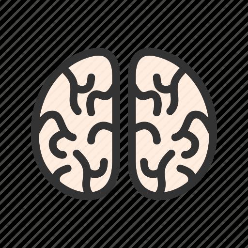 brain, brains, horror, man, mind, scary, zombie icon