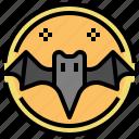 bat, fear, halloween, horror, scary, spooky, terror icon