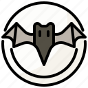 animal, bat, halloween, moon, night icon