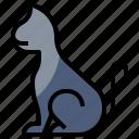 animals, cat, fear, hallowee, horror, pet, terror icon