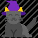 horror, kitten, halloween, animal, cat