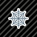 cobweb, net, spider, tarantula