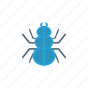 bug, insect, spider, tarantula icon