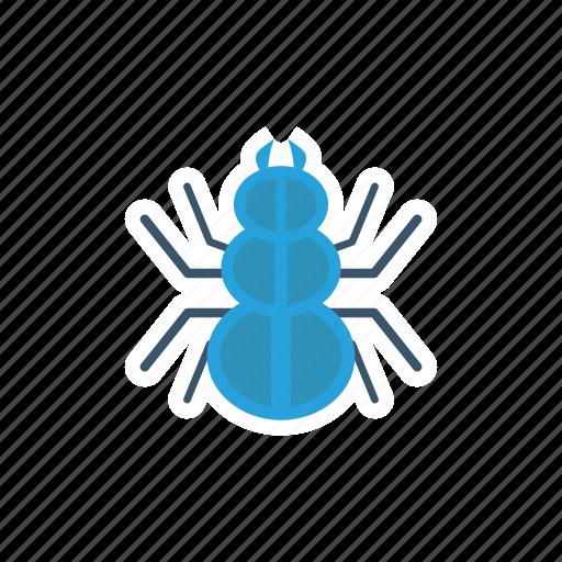bug, insect, spider, tarantula icon