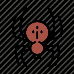 fear, halloween, horror, spider icon