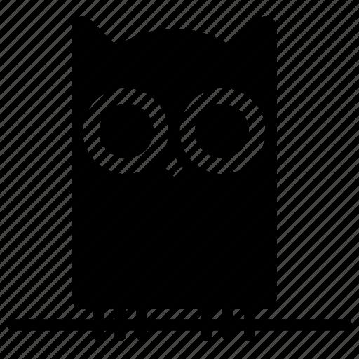 bird, halloween, night, owl, trick or treat, wisdom, wise icon