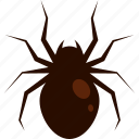 animal, brown, halloween, scary, spider icon