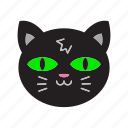 animal, cat, halloween, witch icon