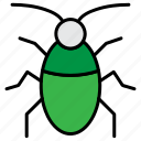 beetle, bug, cockroach, insect icon