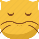cat, emoji, emoticon, smile, smiley icon