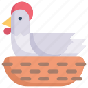 chicken incubates, easter day, egg, happy easter, hen, holidays, spring season icon