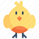 chicken, chicks, easter day, egg, happy easter, holidays, spring season icon