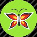 butterfly, ecology, flower, garden, green, nature, summer