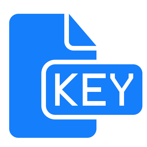 document, file, key icon