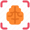 brain, business, headhunting, knowledge, man, science icon