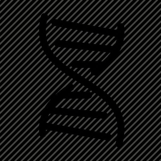 chromosomes, dna, genetics, molecule icon