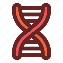 biology, deoxyribonucleic acid, dna, dna structure, education, genetical, science icon