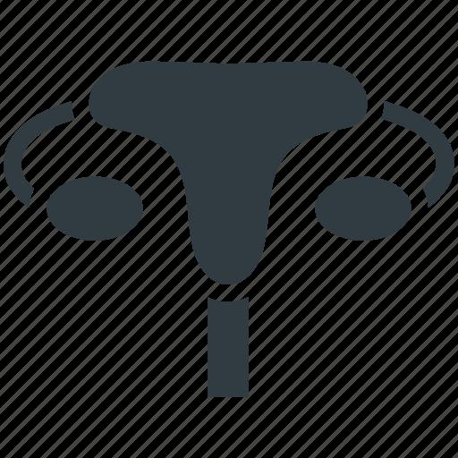 bladder, excretory system, human body, organ, urology icon