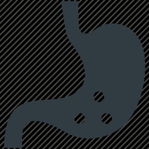 anatomy, body part, human stomach, organ, stomach icon