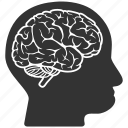 brain, human, idea, mind, person, profile icon