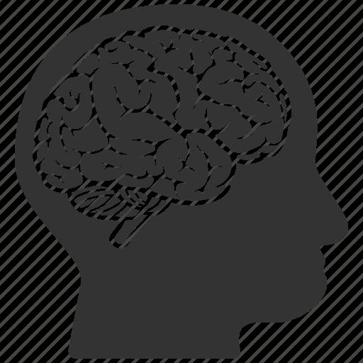 brain, human, idea, mind, person, profile icon