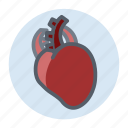 healthcare, heart, medical, treatment icon
