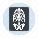 bones, care, healthcare, hospital, xray icon
