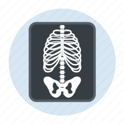 bones, care, healthcare, hospital, xray icon