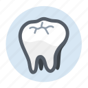 dental, dental care, healthcare, tooth icon