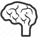 brain, brainstorming, human, neurology, neuroscience, neurosurgery icon