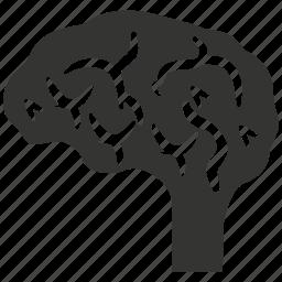 brain, brainstorming, intellectual, mind, neuroscience, neurosurgery, think icon