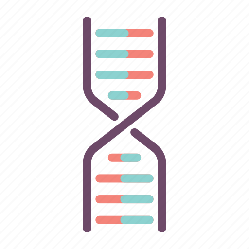 Dna, biology, genetic, genome, helix icon - Download on Iconfinder