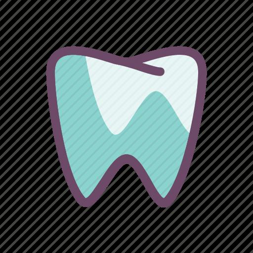 dental, dentist, molar, mouth, teeth, tooth icon