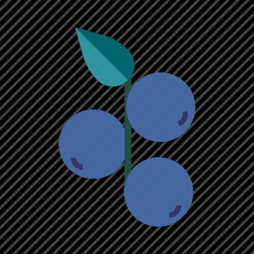 berry, fresh, fruit, grape, healthy, juicy, organic icon