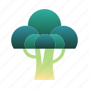 broccoli, diet, healthy, nutrition, organic, vegetable, vegetarian icon