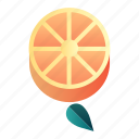 citrus, diet, fresh, fruit, healthy, orange, organic icon
