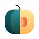 diet, healthy, ingredient, organic, pumpkin, vegetable icon