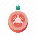 diet, fresh, healthy, organic, tomato, vegetable icon