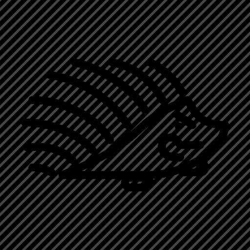 Angry, hedgehog, emoji, emoticon, expression, face, smiley icon - Download on Iconfinder