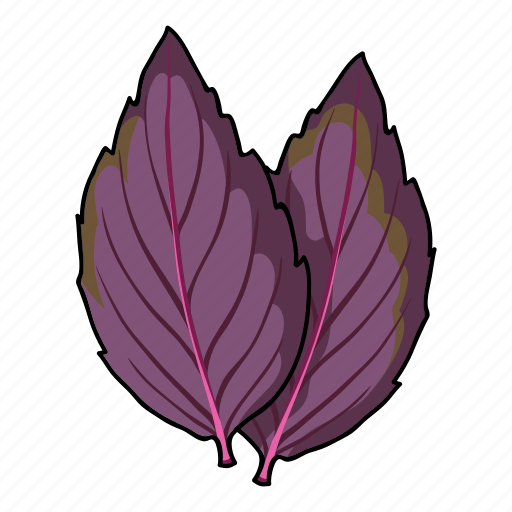 basil, eco, food, leaf, plant, seasoning, spice icon