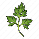 cockerel, eco, food, leaf, plant, seasoning, spice icon